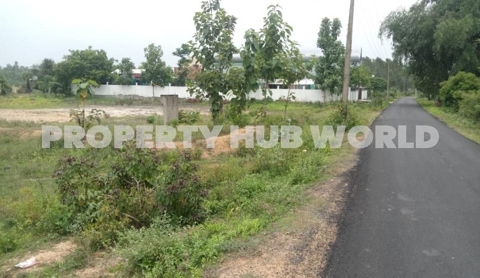 property in Chennai