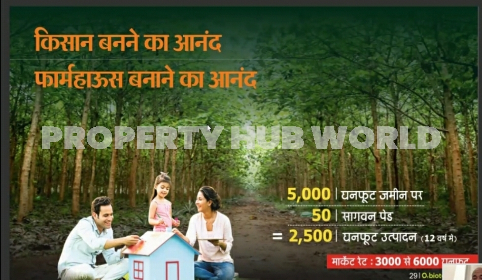 BEST INVESTMENT FARM PLOTS WITH TEAK WOOD PLANT  in Nagpur