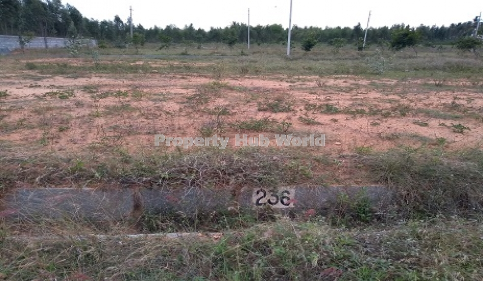 Plot in Anekal Development Authority approved Layout